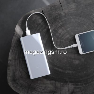 Acumulator Extern iPhone iPad Samsung Huawei Xiaomi Power Bank Dual USB 10000mAh Argintiu