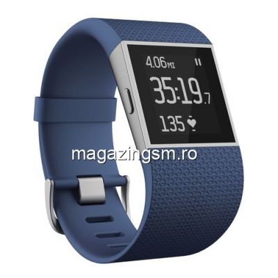 Bratara Fitness Fitbit Surge Large Albastra
