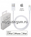 Apple iPhone 5S iPhone 5 Lightning to USB Cablu Original